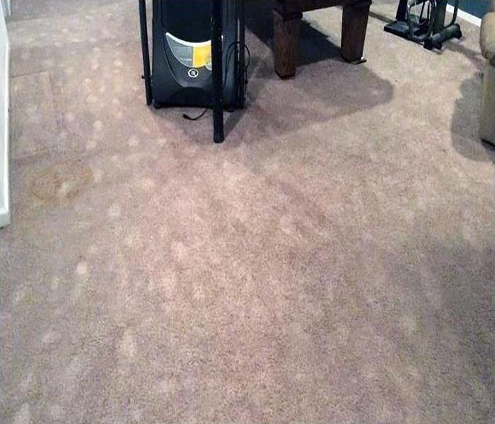 Tan carpet with discoloration due to water